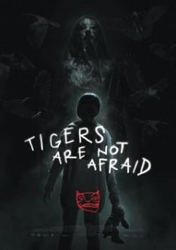tigersarenot_poster